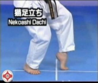 Karate: golpes de puño  Nekoashi